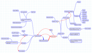 Mind Map for web service testing overview